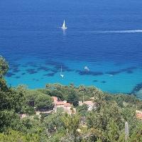 Unterwasserfischen Insel Elba