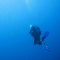 Schiffswrack Elviscott Insel Elba