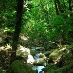 San Cerbone Insel Elba