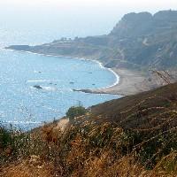Elba seagull coast
