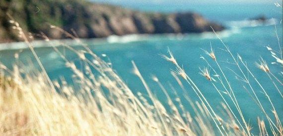 Elba Island to discover