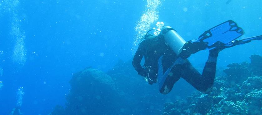 Scuba diving on Elba Island