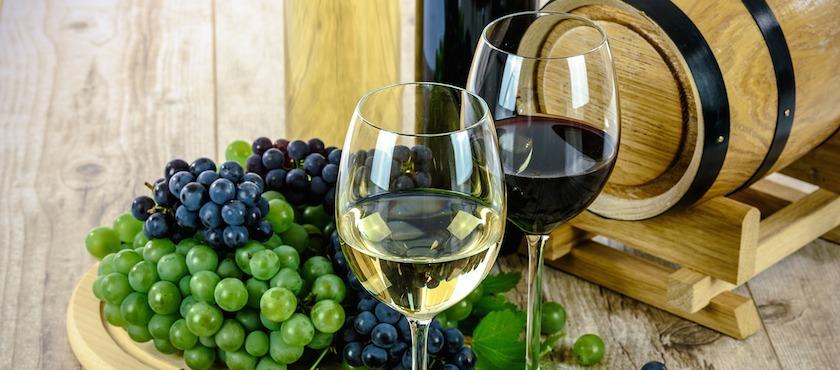 Elba Island wines