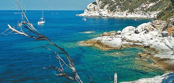 cala della Cotaccia isola d'Elba