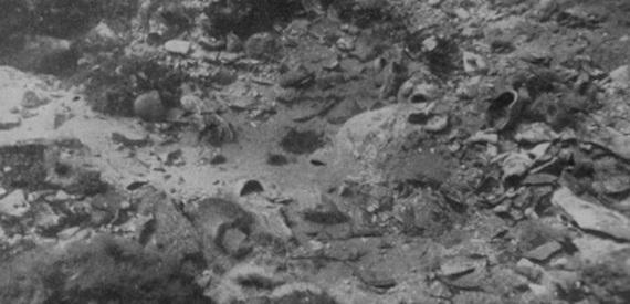 relitti romani dell'isola d'Elba